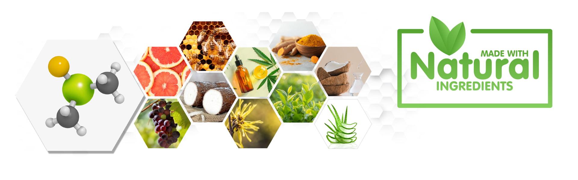 rxhemp-natural-warm-cool-medical-grade-topcial-thc-free-cbd-cream-Ingredients-Banner